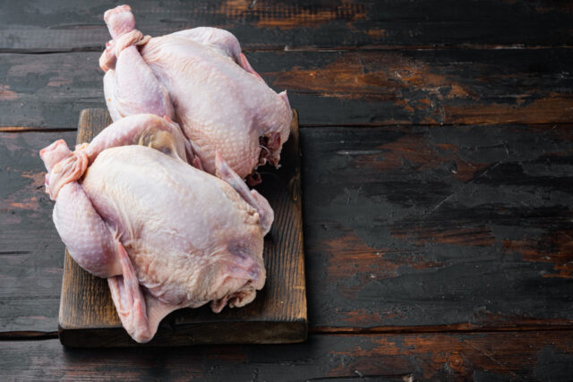 qué es el picantón de pollo